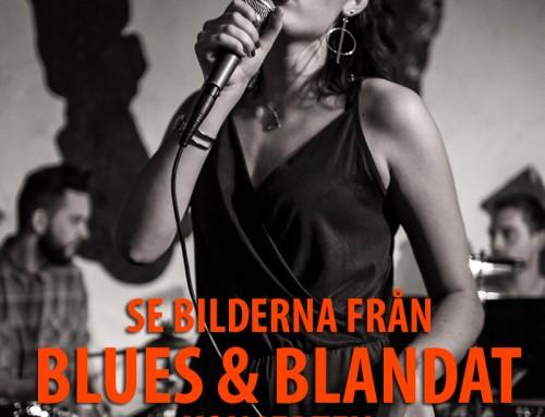 Bilder från konserten Blues & Blandat
