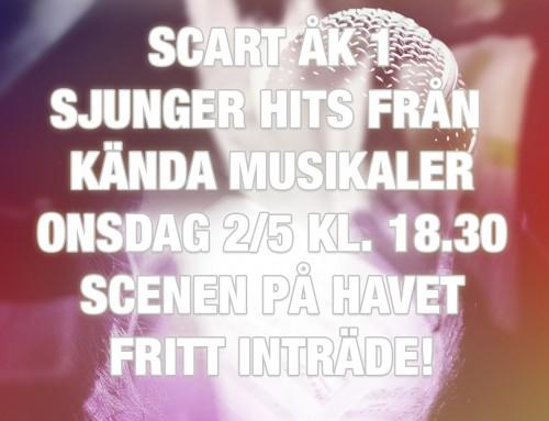 Musikalkonsert 2/5 18.30
